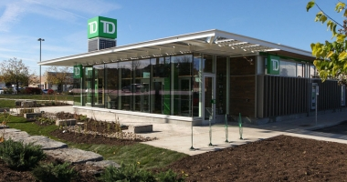 TD SEED Concept Branch